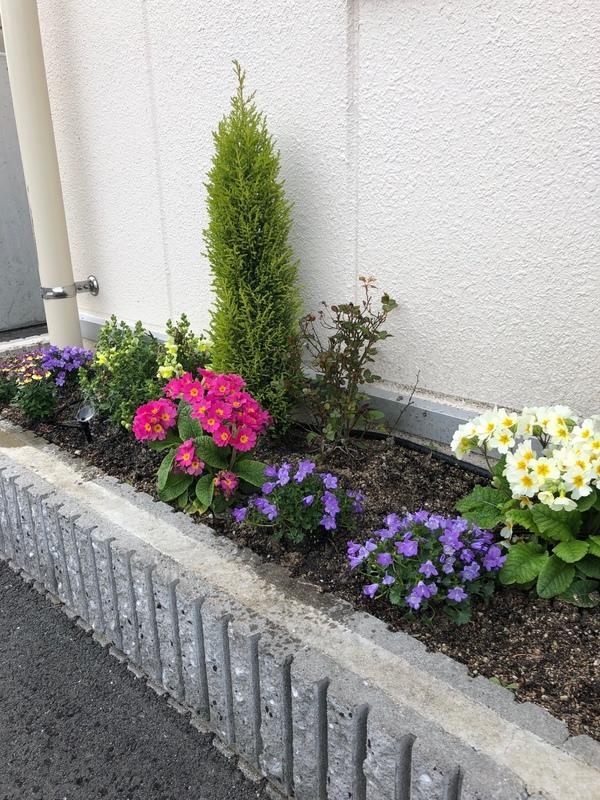 2019/03/24 花壇を植え替えました